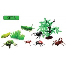 MODEL OF INSECT (SET B)