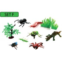 MODEL OF INSECT (SET F)