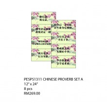 PESPS1311 (Prosains) - CHINESE PROVERB SET A
