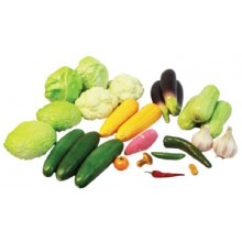 PRA010(ProSains) VEGETABLE SET (25 PCS / SET)